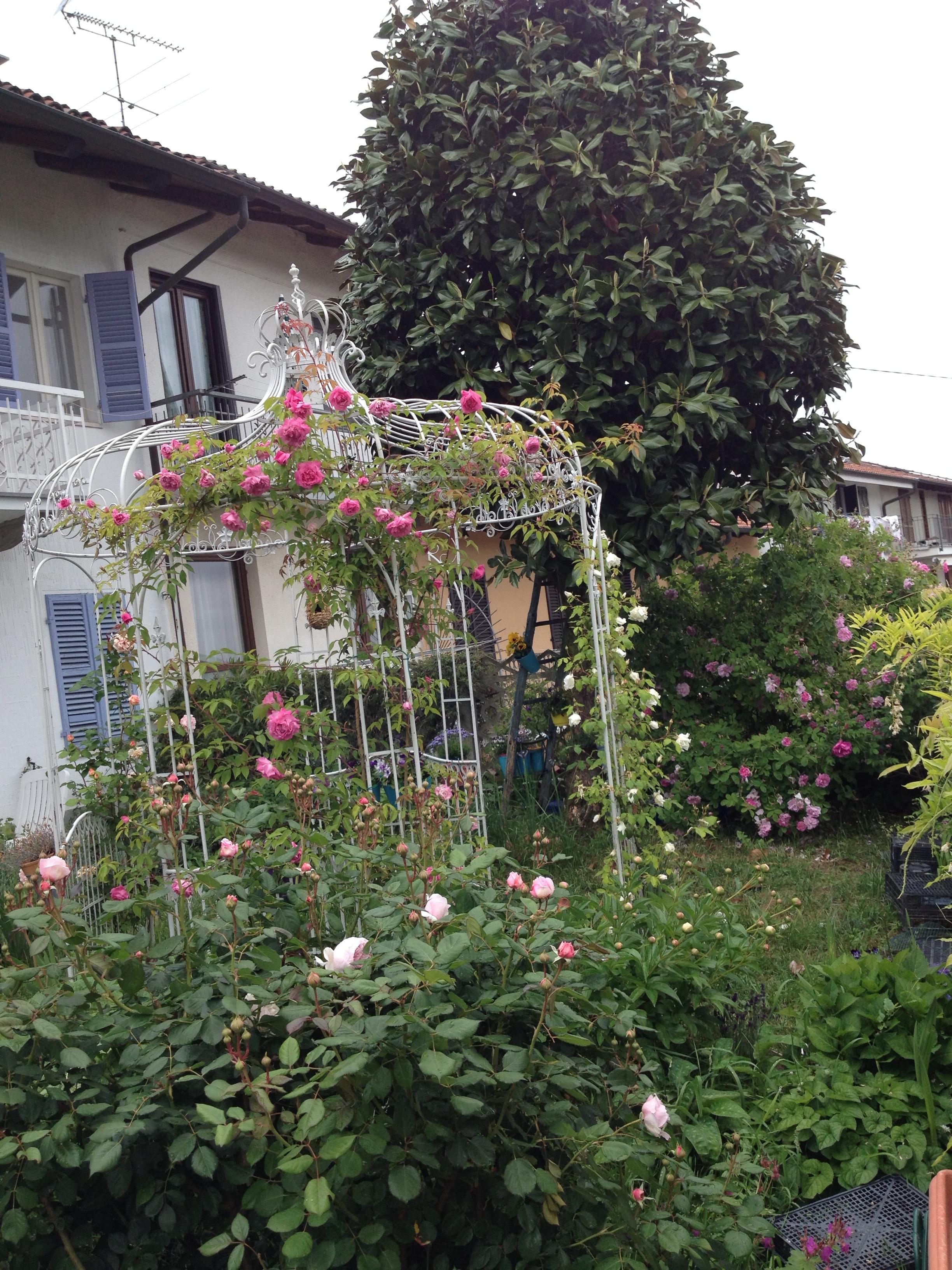 Amazing come creare un giardino speciale un sogno reale - Come creare un bel giardino ...